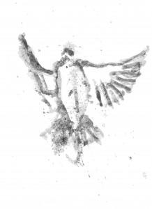 bird 001